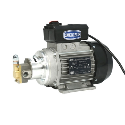 Elektrischbetriebene Zahnradpumpe - 10,5 l/min. - 230V