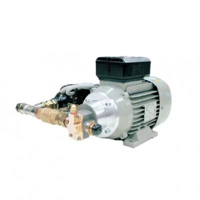 Elektrische Zahnradpumpe - 230V - 10 l/min.